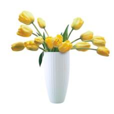 Vázák, kaspók és virágápolási termékek