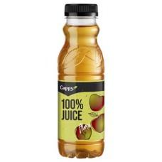 Gyümölcslé, 100%, 0,33 l, CAPPY alma