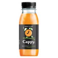Gyümölcslé, 55%, 0,25l, CAPPY