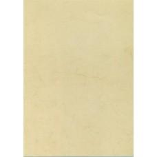 Előnyomott papír, A4, 200 g, APLI, havanna